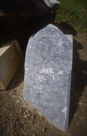 HALL, REBECCA - Champaign County, Ohio | REBECCA HALL - Ohio Gravestone Photos