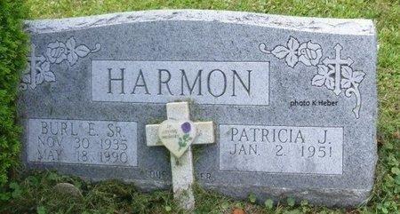 ANSTINE HARMON, PATRICIA J - Champaign County, Ohio   PATRICIA J ANSTINE HARMON - Ohio Gravestone Photos