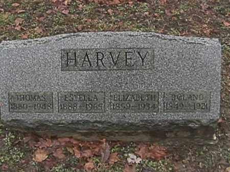 HARVEY, THOMAS - Champaign County, Ohio | THOMAS HARVEY - Ohio Gravestone Photos