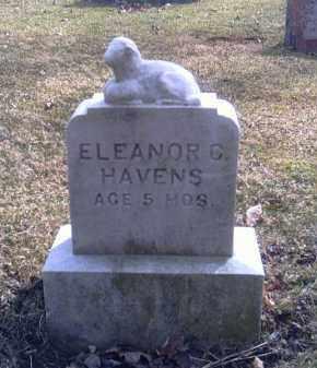 HAVENS, ELEANOR C. - Champaign County, Ohio | ELEANOR C. HAVENS - Ohio Gravestone Photos