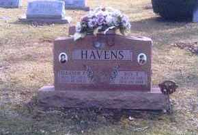 HAVENS, ROY T. - Champaign County, Ohio | ROY T. HAVENS - Ohio Gravestone Photos