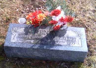 HENRY, JAMES ALBERT - Champaign County, Ohio | JAMES ALBERT HENRY - Ohio Gravestone Photos