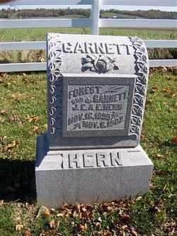 HERN, FOREST GARNETT - Champaign County, Ohio   FOREST GARNETT HERN - Ohio Gravestone Photos