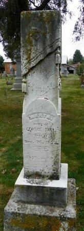HULL, MARY A. - Champaign County, Ohio | MARY A. HULL - Ohio Gravestone Photos
