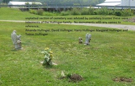 HULLINGER, DAVID - Champaign County, Ohio | DAVID HULLINGER - Ohio Gravestone Photos