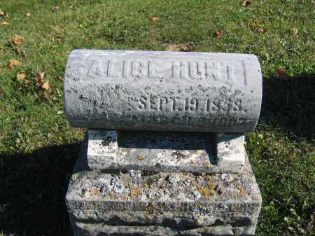 HUNT, ALICE - Champaign County, Ohio | ALICE HUNT - Ohio Gravestone Photos
