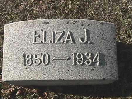 IDLE, ELIZA JANE - Champaign County, Ohio | ELIZA JANE IDLE - Ohio Gravestone Photos