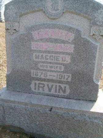 BIDDLE IRVIN, MARGARET D. - Champaign County, Ohio | MARGARET D. BIDDLE IRVIN - Ohio Gravestone Photos