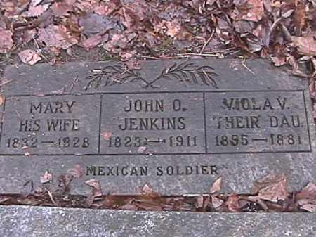 JENKINS, MARY - Champaign County, Ohio | MARY JENKINS - Ohio Gravestone Photos
