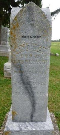 "BAKER JENKINS, LYDIA C ""LIDDY"" - Champaign County, Ohio | LYDIA C ""LIDDY"" BAKER JENKINS - Ohio Gravestone Photos"