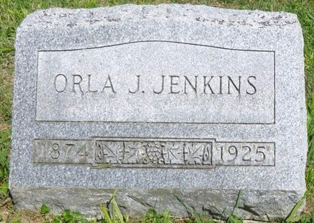 "JENKINS, ORLA JACKSON ""ORLIE"" - Champaign County, Ohio | ORLA JACKSON ""ORLIE"" JENKINS - Ohio Gravestone Photos"