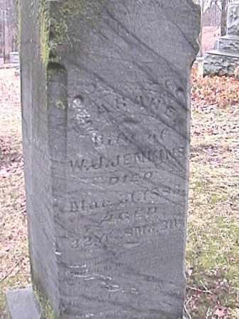 JENKINS, SARAH E. - Champaign County, Ohio | SARAH E. JENKINS - Ohio Gravestone Photos