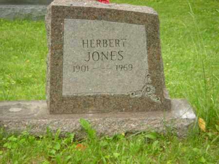 JONES, HERBERT - Champaign County, Ohio | HERBERT JONES - Ohio Gravestone Photos