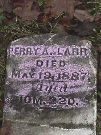 LARRY, PERRY A. - Champaign County, Ohio | PERRY A. LARRY - Ohio Gravestone Photos