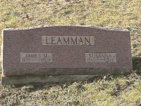 APPLE LEAMMAN, SUSANNA - Champaign County, Ohio | SUSANNA APPLE LEAMMAN - Ohio Gravestone Photos