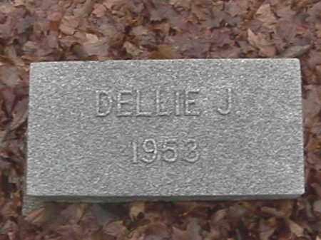 LEMMON, DELLIE J. - Champaign County, Ohio | DELLIE J. LEMMON - Ohio Gravestone Photos