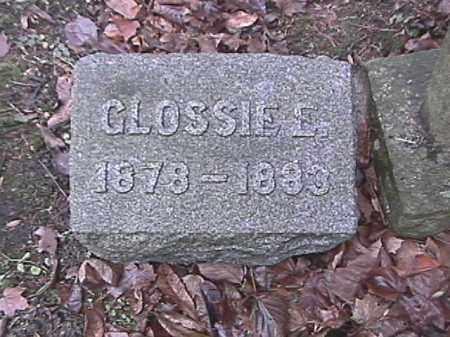 LOHNES, CLOSSIE E. - Champaign County, Ohio   CLOSSIE E. LOHNES - Ohio Gravestone Photos