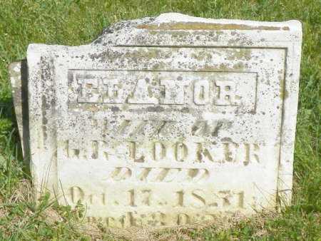 LOOKER, ELANOR - Champaign County, Ohio | ELANOR LOOKER - Ohio Gravestone Photos
