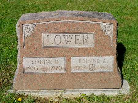LOWER, PRINCE A. - Champaign County, Ohio | PRINCE A. LOWER - Ohio Gravestone Photos