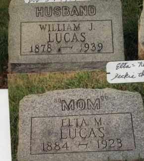 LUCAS, WILLIAM JAMES - Champaign County, Ohio | WILLIAM JAMES LUCAS - Ohio Gravestone Photos