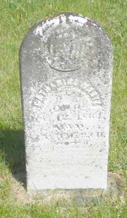 MARTZ, CATHARINE - Champaign County, Ohio | CATHARINE MARTZ - Ohio Gravestone Photos