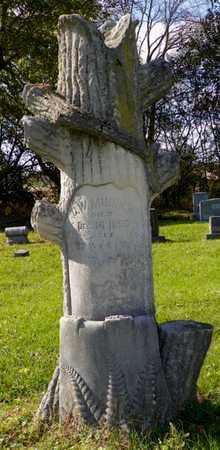 MINNICH, G. W. - Champaign County, Ohio | G. W. MINNICH - Ohio Gravestone Photos