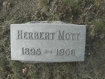 MOTT, HERBERT - Champaign County, Ohio | HERBERT MOTT - Ohio Gravestone Photos