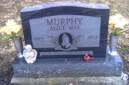 MURPHY, ALICE MAE - Champaign County, Ohio | ALICE MAE MURPHY - Ohio Gravestone Photos