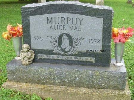 EVILSIZOR MURPHY, ALICE MAE - Champaign County, Ohio | ALICE MAE EVILSIZOR MURPHY - Ohio Gravestone Photos