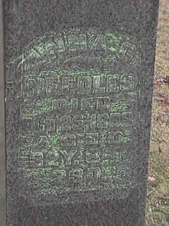 NEEDLES, ANNA C. - Champaign County, Ohio   ANNA C. NEEDLES - Ohio Gravestone Photos