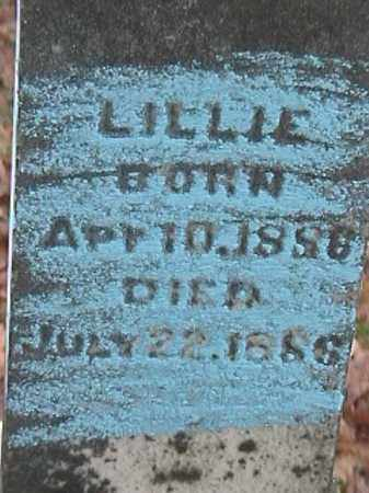 NICKELS, LILLIE - Champaign County, Ohio | LILLIE NICKELS - Ohio Gravestone Photos
