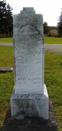 OWEN, MARY B. - Champaign County, Ohio   MARY B. OWEN - Ohio Gravestone Photos
