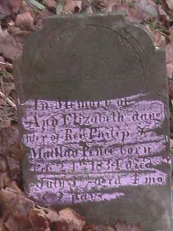 PENCE, ANN ELIZABETH - Champaign County, Ohio | ANN ELIZABETH PENCE - Ohio Gravestone Photos