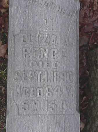 PENCE, ELIZA A. - Champaign County, Ohio   ELIZA A. PENCE - Ohio Gravestone Photos