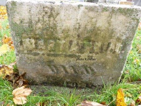 PRILL, MARY A - Champaign County, Ohio | MARY A PRILL - Ohio Gravestone Photos