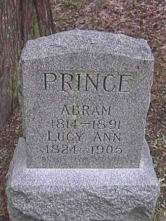 PRINCE, LUCY ANN - Champaign County, Ohio | LUCY ANN PRINCE - Ohio Gravestone Photos
