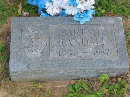 RANDALL, JAMES - Champaign County, Ohio | JAMES RANDALL - Ohio Gravestone Photos