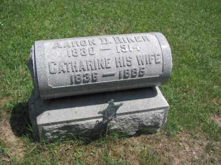 RIKER, CATHERINE - Champaign County, Ohio   CATHERINE RIKER - Ohio Gravestone Photos