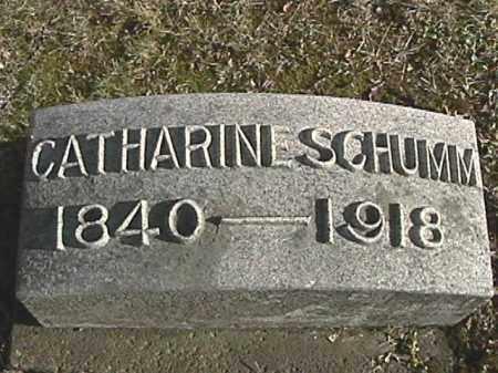 SCHUMM, CATHARINE - Champaign County, Ohio   CATHARINE SCHUMM - Ohio Gravestone Photos