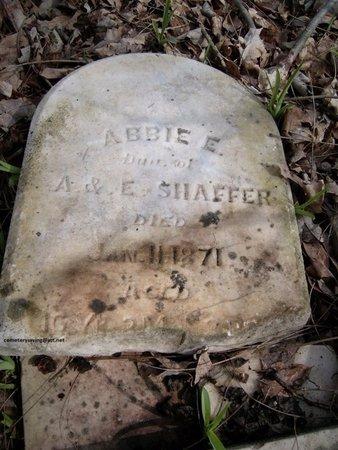 SHAFFER, ABBIE E - Champaign County, Ohio   ABBIE E SHAFFER - Ohio Gravestone Photos
