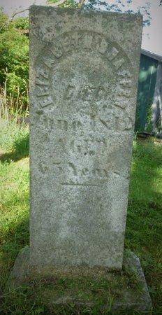SHAFFER, ELIZABETH - Champaign County, Ohio | ELIZABETH SHAFFER - Ohio Gravestone Photos
