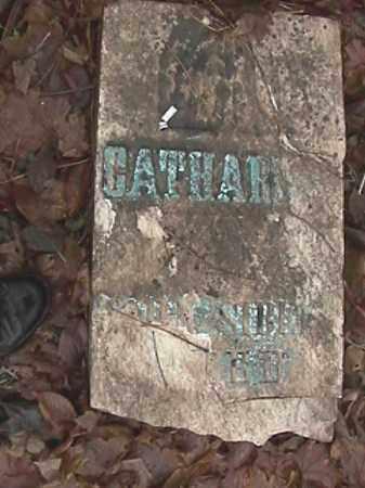 SIBERT, CATHARINE BOWERS - Champaign County, Ohio | CATHARINE BOWERS SIBERT - Ohio Gravestone Photos