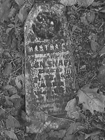SNAPP, INFANT - Champaign County, Ohio | INFANT SNAPP - Ohio Gravestone Photos