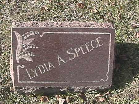 ROBINSON SPEECE, LYDIA ANN - Champaign County, Ohio | LYDIA ANN ROBINSON SPEECE - Ohio Gravestone Photos