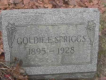 SPRIGGS, GOLDIE E - Champaign County, Ohio   GOLDIE E SPRIGGS - Ohio Gravestone Photos