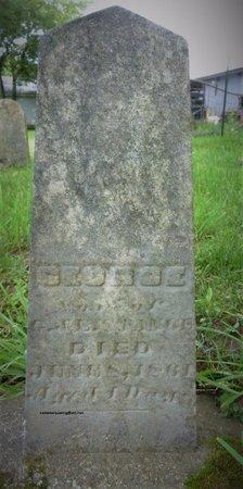 STANGE, GEORGE - Champaign County, Ohio | GEORGE STANGE - Ohio Gravestone Photos