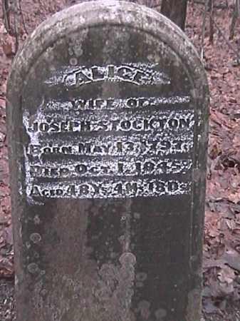 LEEDOM STOCKTON, ALICE - Champaign County, Ohio   ALICE LEEDOM STOCKTON - Ohio Gravestone Photos