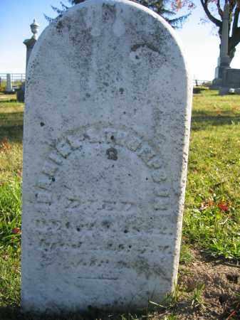 THOMPSON, DANIEL E. - Champaign County, Ohio   DANIEL E. THOMPSON - Ohio Gravestone Photos