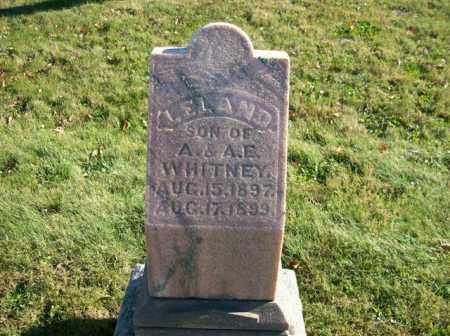 WHITNEY, LELAND - Champaign County, Ohio | LELAND WHITNEY - Ohio Gravestone Photos