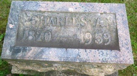 WIANT, CHARLES ADAM - Champaign County, Ohio | CHARLES ADAM WIANT - Ohio Gravestone Photos